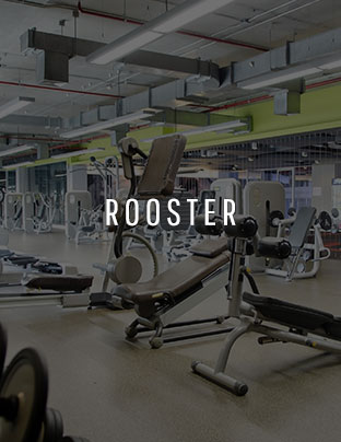 real-gym-rooster